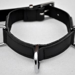 Narrow 3 D-ring collar