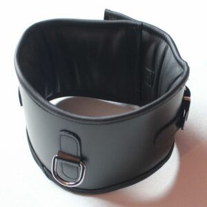 Heavy duty posture collar