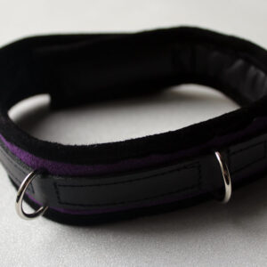 Purple suede padded collar