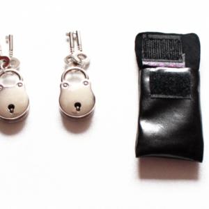 Pair of padlocks