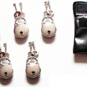 Set of five padlocks